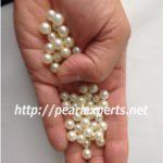 真珠の珠をてのひらの中で分けて見ていきます