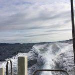 志摩市英虞湾より 大切なアコヤ貝の命を守るために