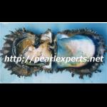 アコヤガイの大量死に関する真珠振興会の取組について